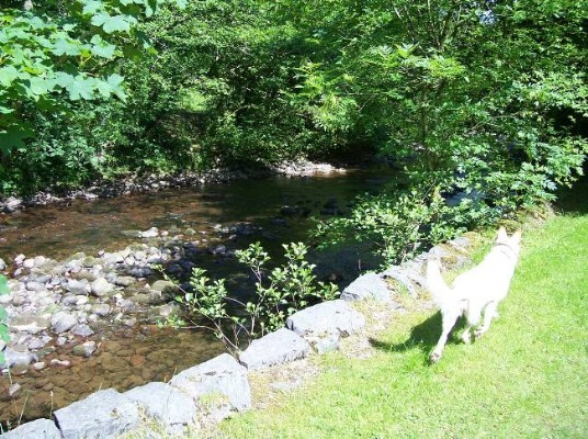 River Tawe which borders lower gardens at Craig y Nos Castle