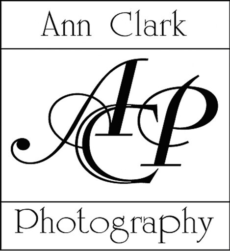 Ann Clark Photography logo