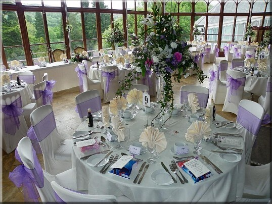 pale purple chair ribbons on white covered chairs for a wedding reception in the conservatory at Craig y Nos Castle