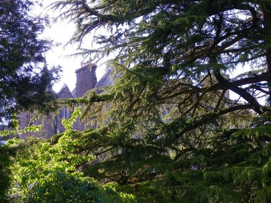Craig y Nos Castle seen through the branches of tall trees in the lower gardens