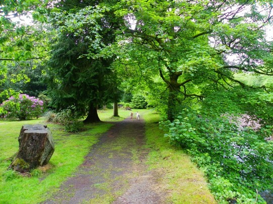Craig y Nos Castle path alongside the river Tawe in the Lower Gardens