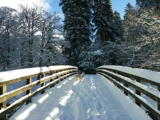 Craig y Nos Country Park snow covered bridge over river Tawe