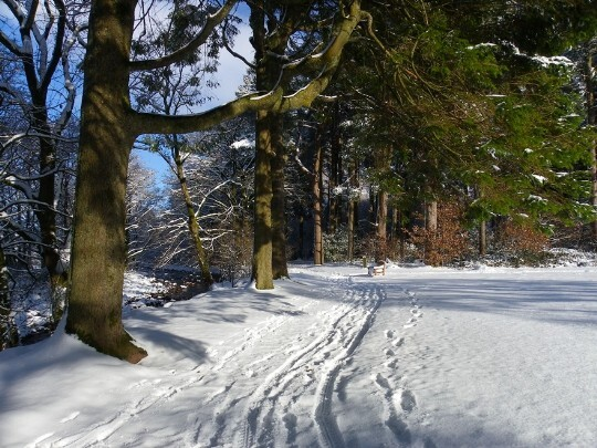 Craig y Nos Country Park main path beside River Tawe in Winter snow