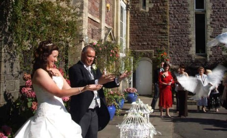 Lovey Dovey UK Dove Release Weddings South Wales