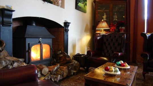 Craig y Nos Castle Wedding Venue Wales the Nicolini room used as a guest lounge