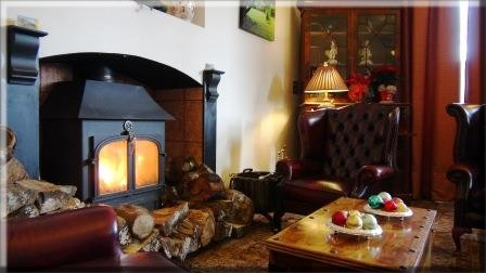 Roaring Clearview Log burner newly installed in Nicolini Reception Lounge at Craig y Nos Castle