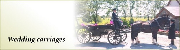 Rowena Moyse Wedding Carriages Swansea